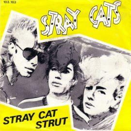 straycatstrut